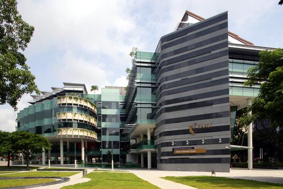 新加坡管理大学商法双学位