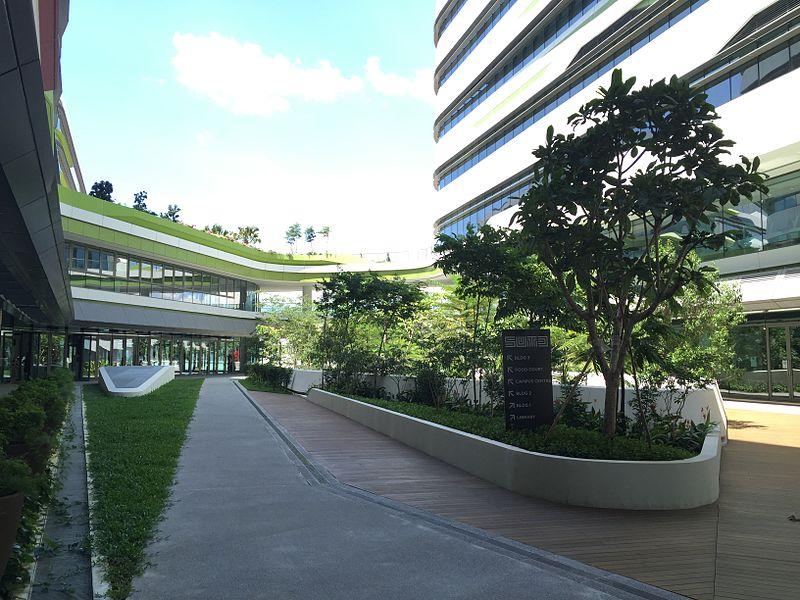 选择新加坡科技设计大学就读,该校的优缺点都值得了解一下