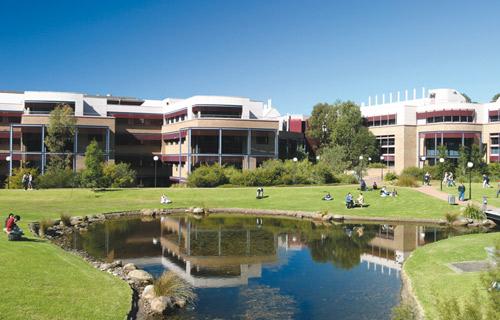 """澳洲留学千万别错失这些看似""""野鸡大学""""的正经大学!"""