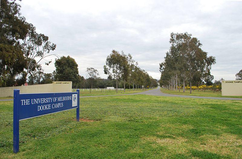 从澳洲直升大学,先看澳洲中学教育与澳洲高考制度介绍!
