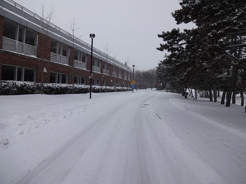 加拿大约克大学法学院