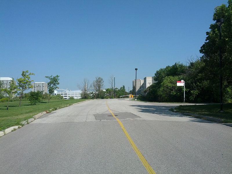加拿大约克大学学生生活