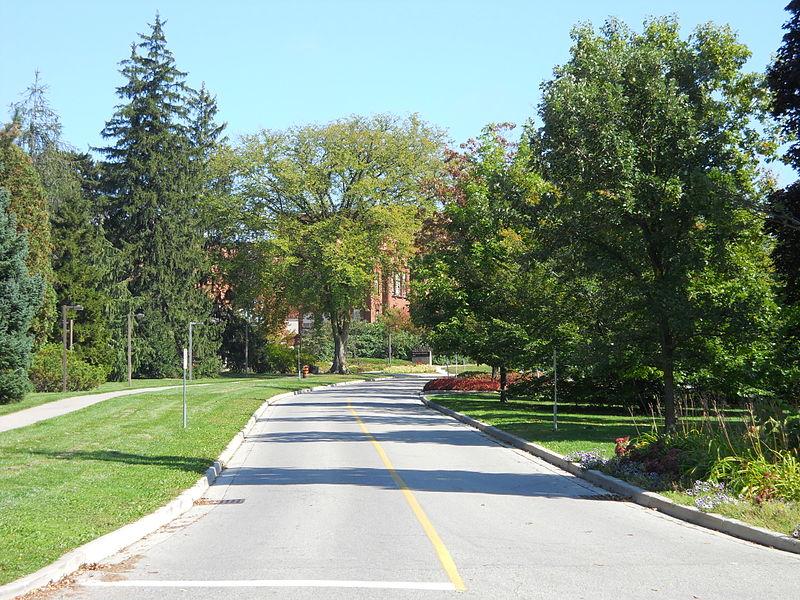 圭尔夫大学.