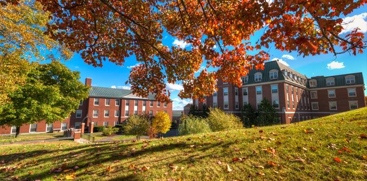 新布伦瑞克大学