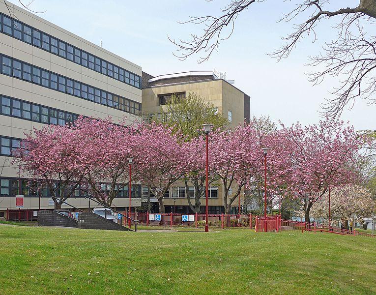 英国院校解读之布拉德福德大学