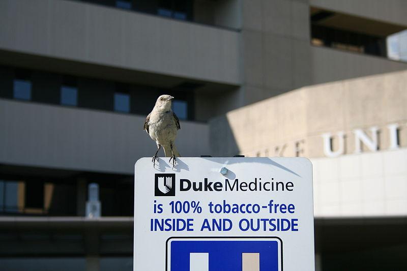 美国杜克大学学费