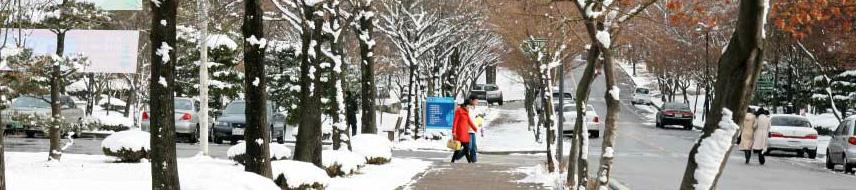 韩国留学必备生活常识之――兑币攻略!