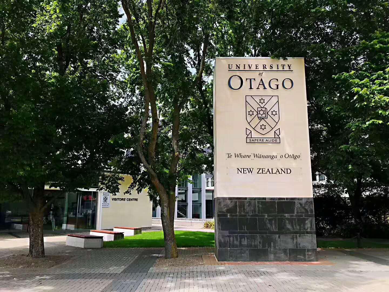 新西兰奥塔哥大年夜学读牙医优势