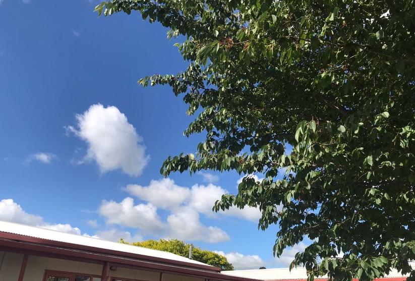 新西兰留学实用的安全指南:在新西兰预防火灾介绍