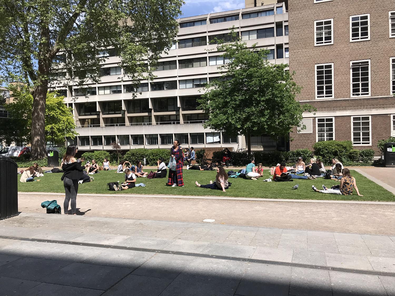 伦敦大学伯贝克学院回国就业前景