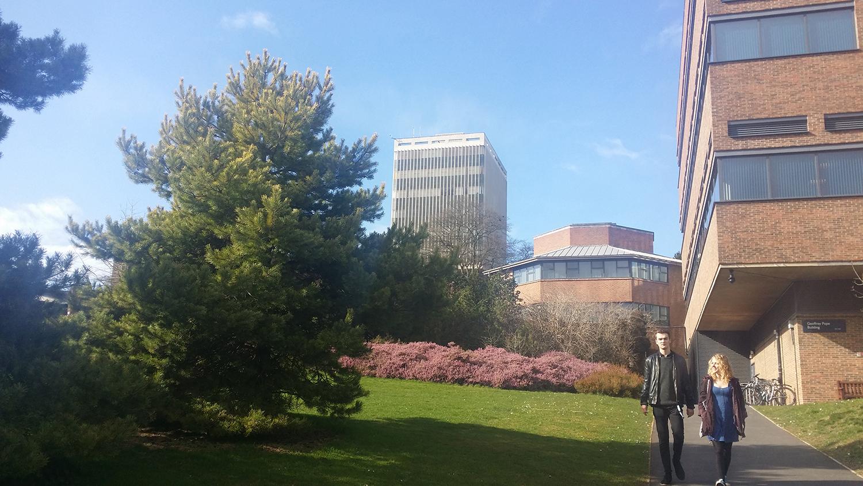格连菲尔德大学:想读博学生的首选