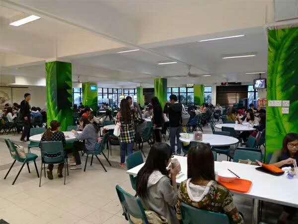 985名校生不负众望成功上榜香港理工大学录取!