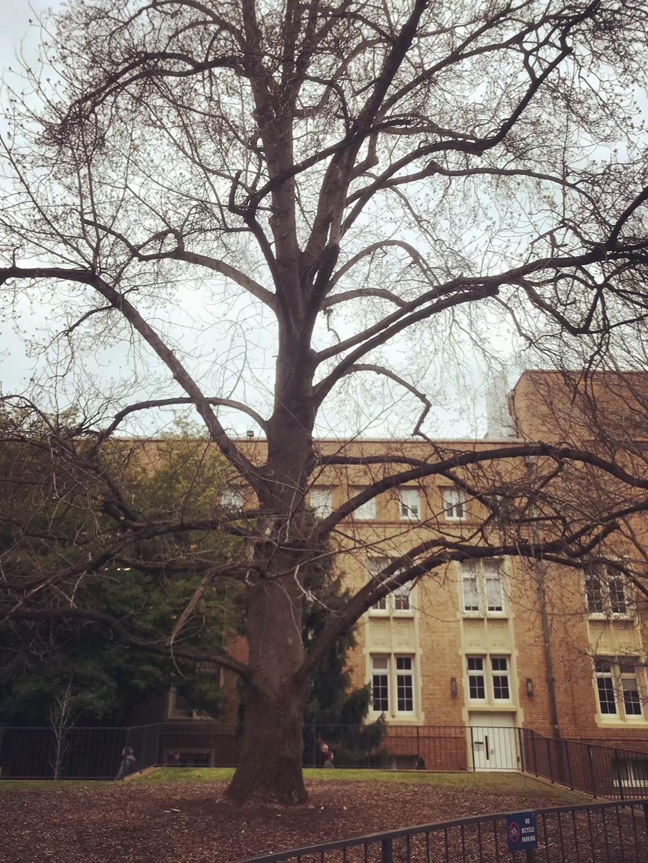 留学云带你走进墨尔本大学