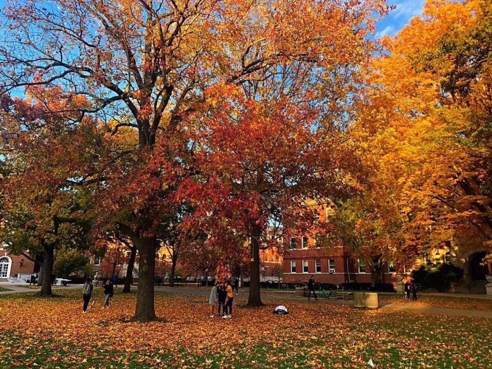 去纽约理工学院就读是怎样一种体验?