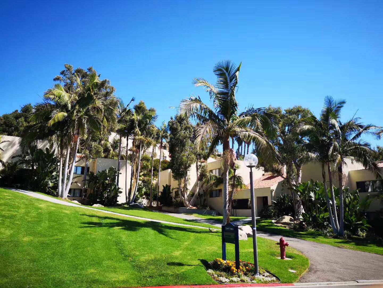 国内本科生怎样考上硅谷大学?