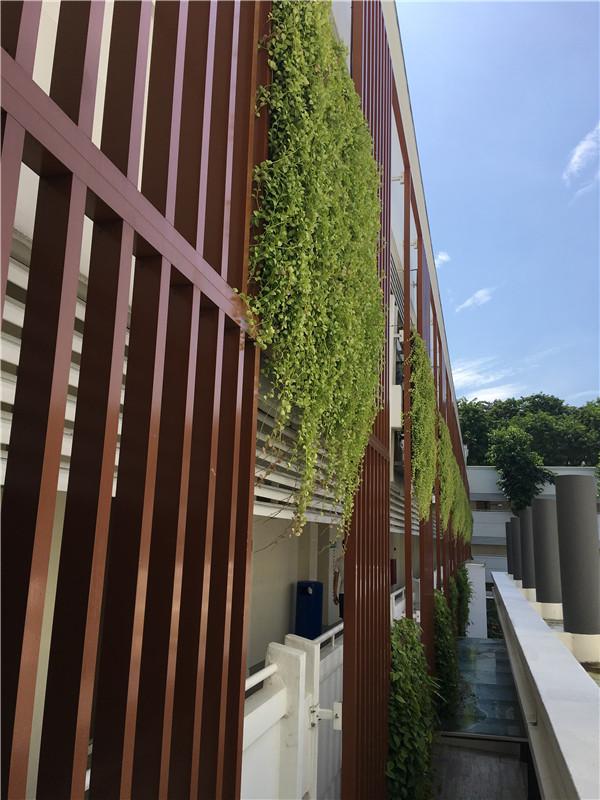 去澳洲詹姆斯库克大学新加坡校区读研对回国工作有好处吗?