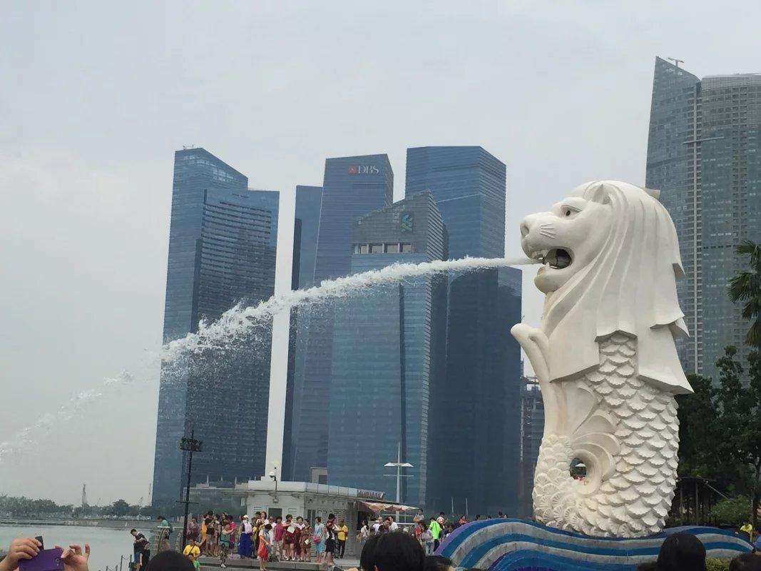 新加坡管理大学排名波动大吗?去读研究生怎么样
