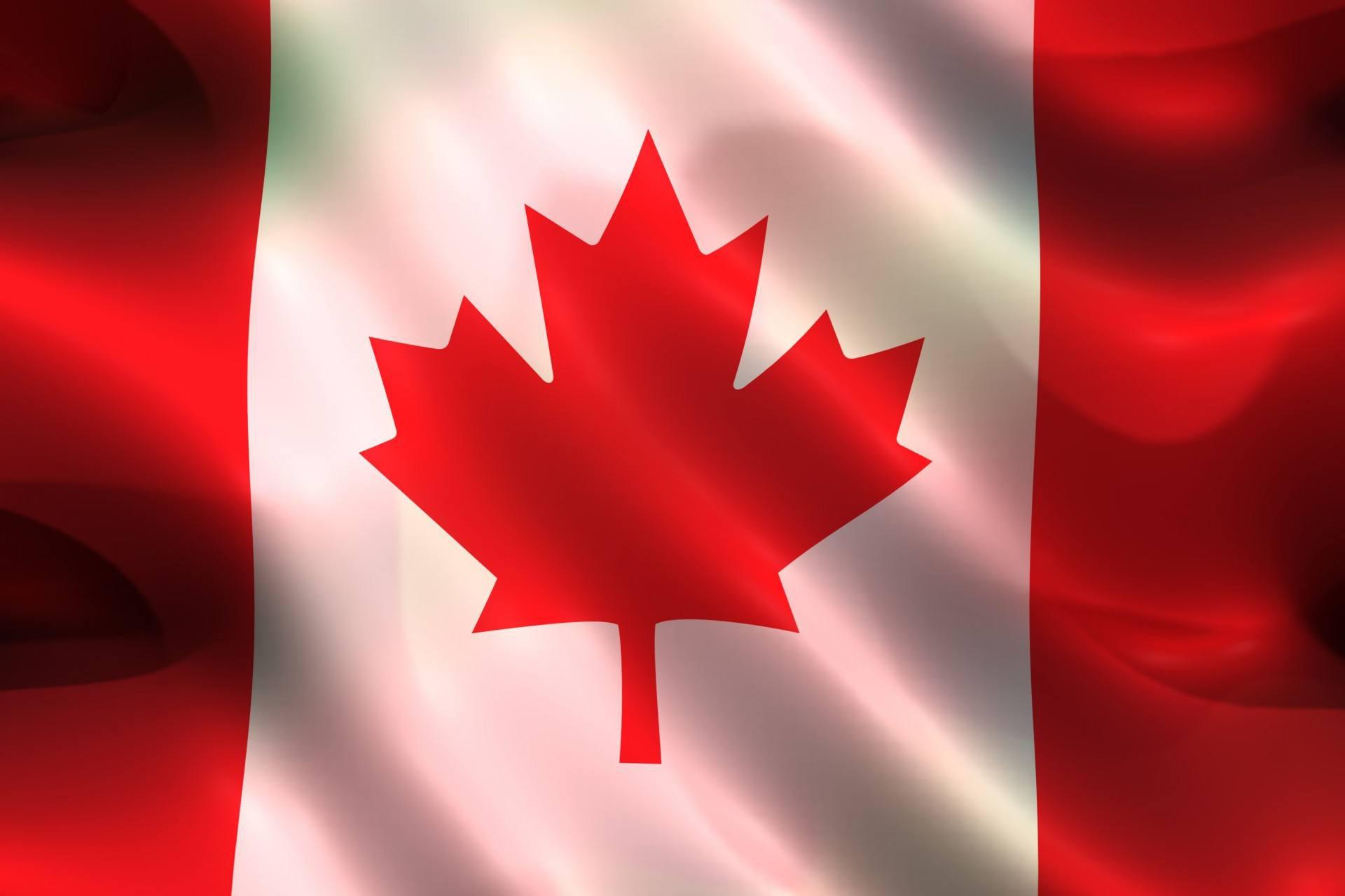 加拿大留学政策