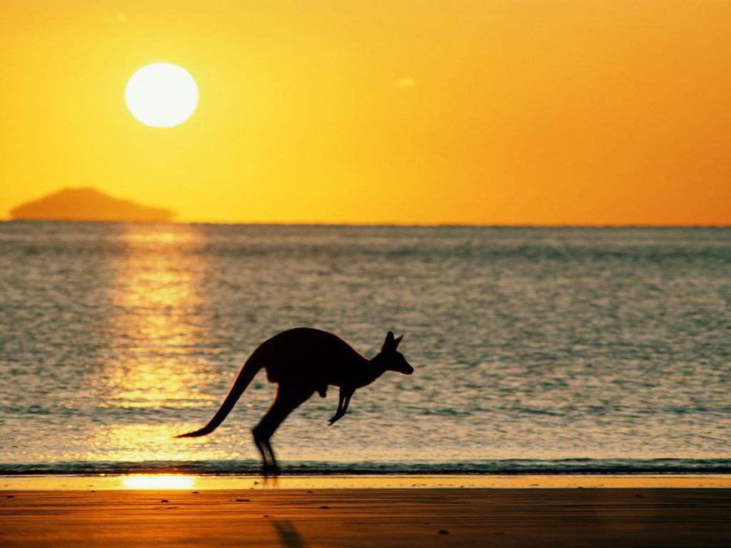 澳洲留学什么时间递交申请比较好?