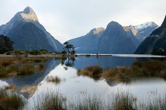 来新西兰前你必须知道的几桩事!