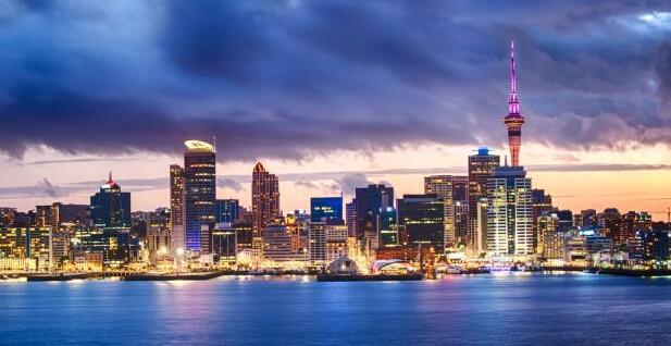 新西兰留学高薪专业
